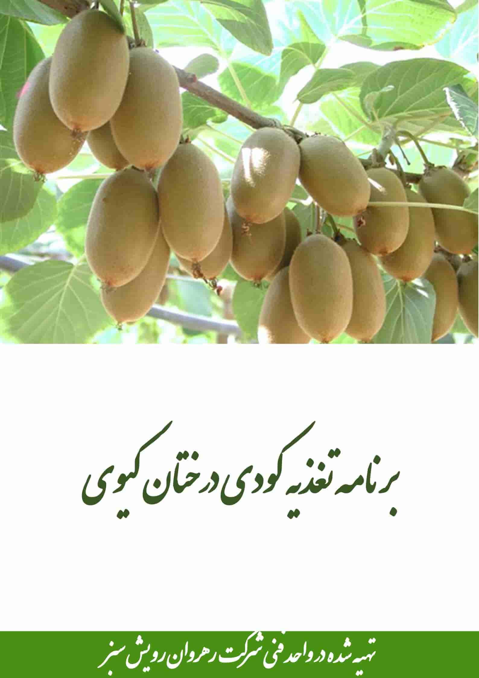 تغذیه کودی درختان کیوی